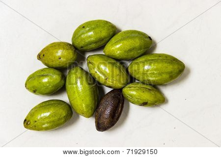 A close-up image of Yellow Myrobalan nut-like fruit