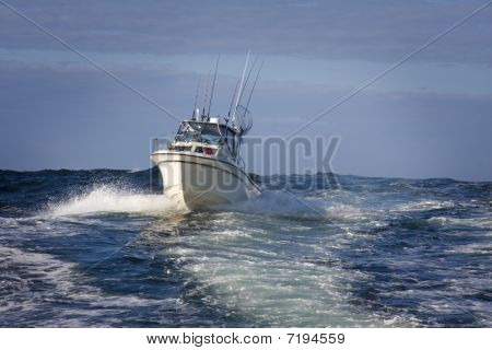 Pleasure Craft Fishing Boat At Sea