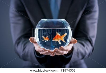 businessman holding small and big gold fish together in the fishbowl