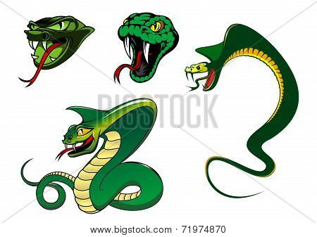 Cartoon angry snake characters