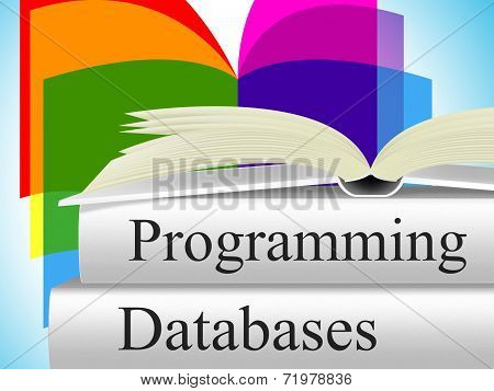 Databases Programming Means Software Development And Byte