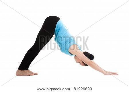 Yogi Female In Yoga Pose Ardha Mukha Shvanasana