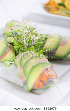 spring roll wrapper with microgreens vertical