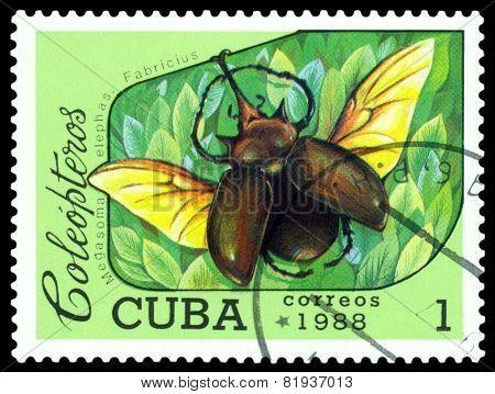 Vintage  Postage Stamp.   Beetle Megasoma Elephas. Fabricius.