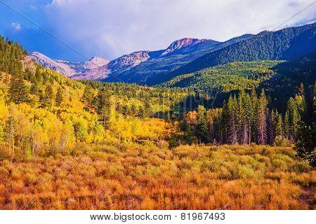 Scenic Aspen Lanscape. Colorado Rocky Mountains. Aspen Colorado United States. poster