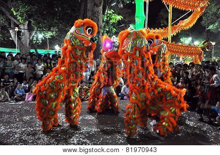 Dragon Dance During The Tet Lunar New Year In Vietnam