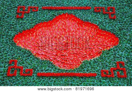 Background With Red Flamingo Lily Flowers, Calla Lily