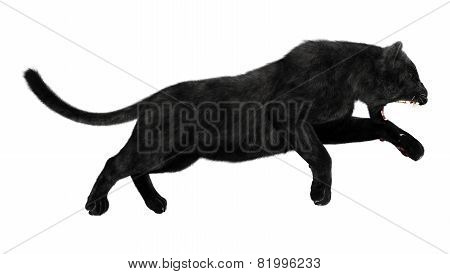 3D digital render of a hunting black panther isolated on white background poster