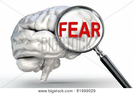 Fear Word On Magnifying Glass And Human Brain