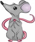 Scared Mouse Looking Up with Clipping Path poster