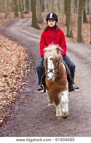 Girl With A Horse In Denmark