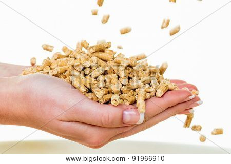 alternative energy for heating. heating with pellets before the environment.