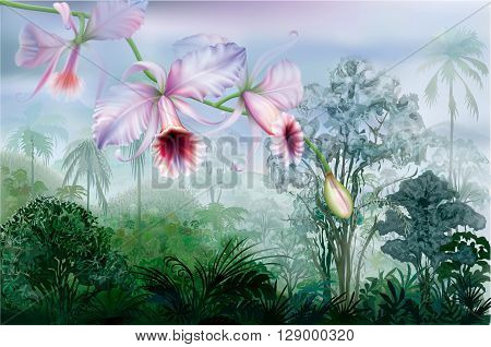 Cattleya orchids on a background tropical rainforest. Vector illustration