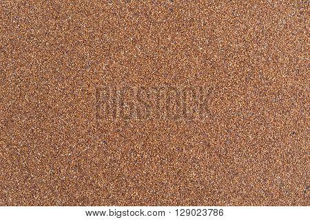 A close view of fine teff grain.