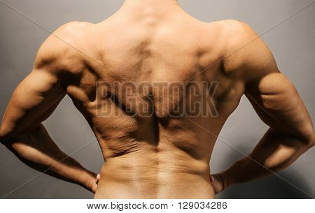 Image of wellshaped and muscular bodybuilder's back