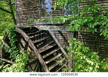 the water wheel of an abandoned grist mill, covered in ivy