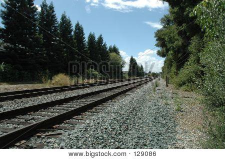 Caltrain Tracks