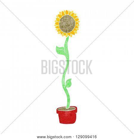 freehand retro cartoon sunflower