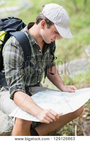 High angle view of young man reading map while sitting on rock in forest