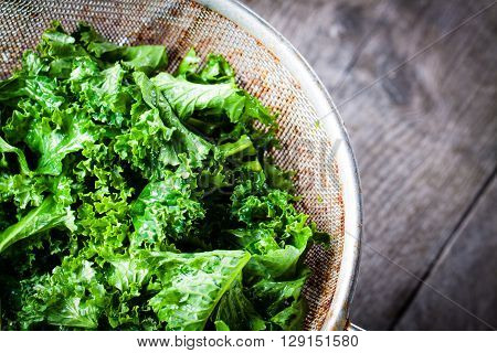Chopped kale in a colander. Big close-up on green leaves of kale