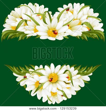 Vector chamomile frame in the shape of heart