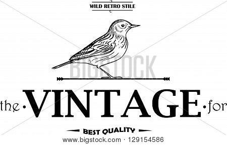 Vintage set animal labels or badges. Retro vector design graphic  emblem.