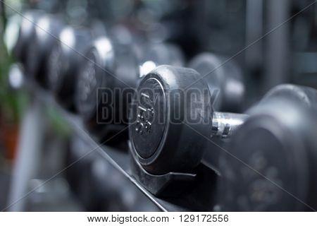 dumbbells in modern gym