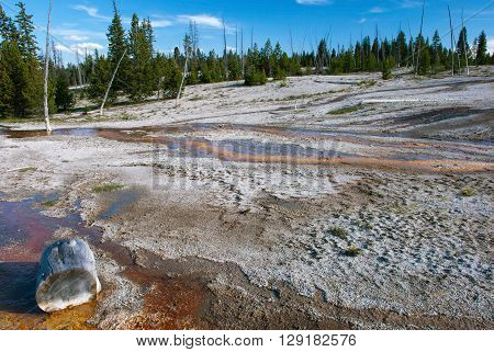 Streams geothermal waters covering West Thumb Geyser Basin Yellowstone National Park Wyoming