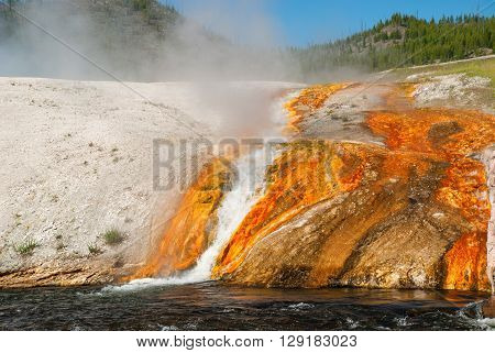 The Steam rising above white-orange banks of Firehole River Yellowstone National Park