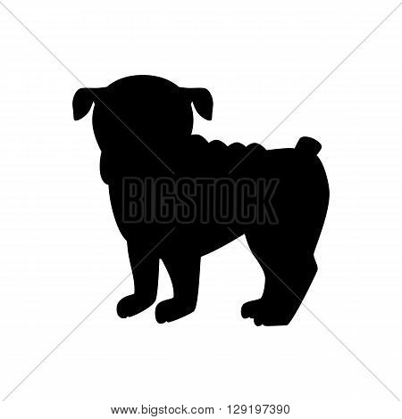 Flat bulldog pet illustration. Standing cute dog vector. Flat dog animal pet vector icon. Home cartoon standing bulldog in flat style. Dog black silhouette isolated on white background
