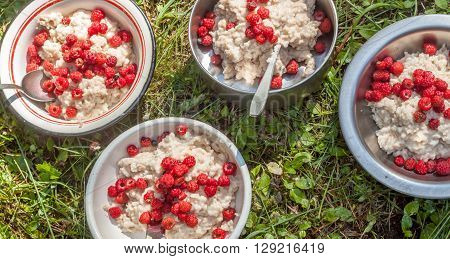 hikers breakfast porridge with raspberry on background of green grass