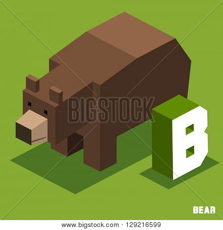B for Bear, Animal Alphabet collection. vector illustration