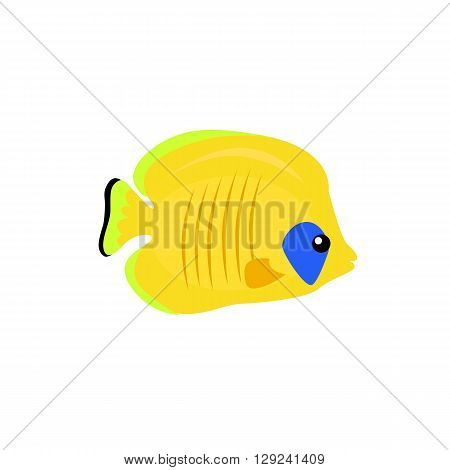 Chaetodon larvatus ocean fish icon. Beautifully painted fish living in ocean or sea with tail and fin. Creating living under water with a yellow color isolated on white background. Vector illustration