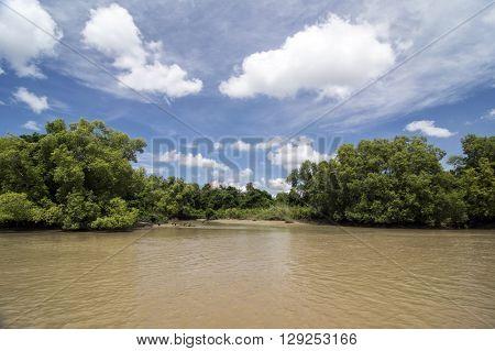 Muddy Crocodile River in Australia