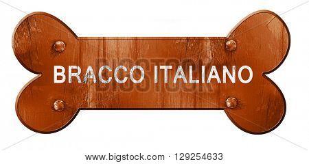 Bracco italiano, 3D rendering, rough brown dog bone