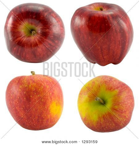 Red Apples Collection