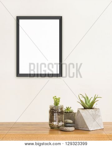 Succulent green plants stones and frame mockup