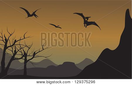 Pterodactyl silhouette in mountain at the afternoon