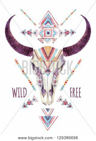 Cow skull in tribal style. Animal skull with ethnic ornament . Buffalo skull isolated on white background. Wild and free design. Watercolor hand painted illustration.
