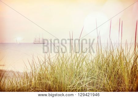 Beach grass on the dunes with a tall ship and sailboat in the ba