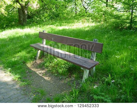 Bench In A Park For Relaxing