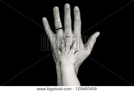 Black and White father's hand with baby hand on top