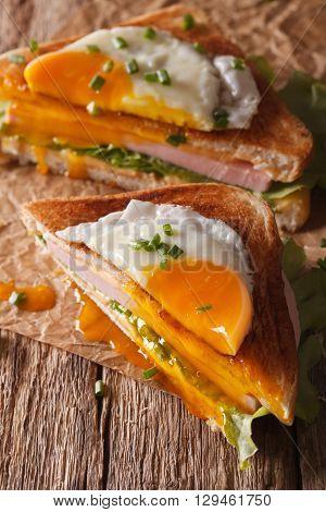 Cut Sandwich Croque Madame Closeup Of Paper. Vertical