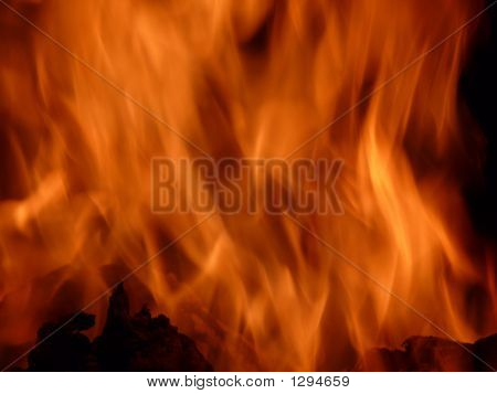 Big Barbecue Bonfire