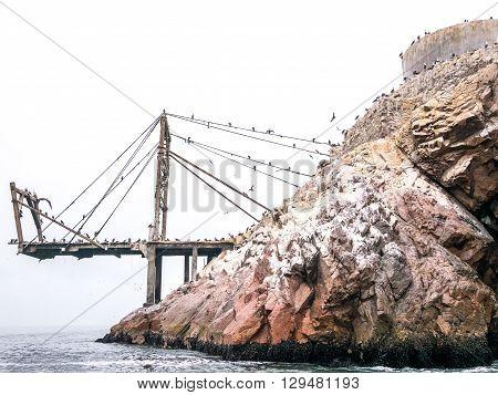 A Pier On The Island