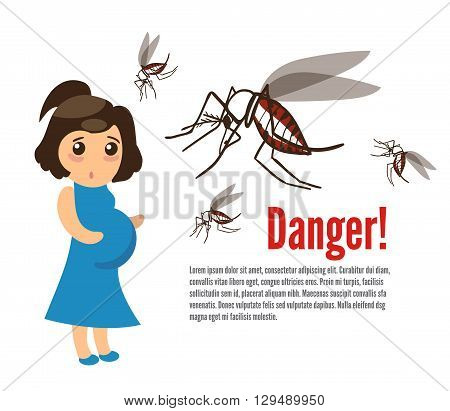 Pregnant woman attacked by mosquitoes. The Zika Fever Virus is linked to microcephaly birth defect cases from pregnant women bitten by Aedes aegypti mosquitoes.