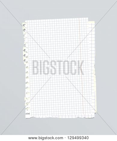White torn stacked squared, ruled notebook paper are on gray background.