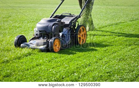 Lawn mower mower, grass, equipment, mowing, gardener, care, work, tool,