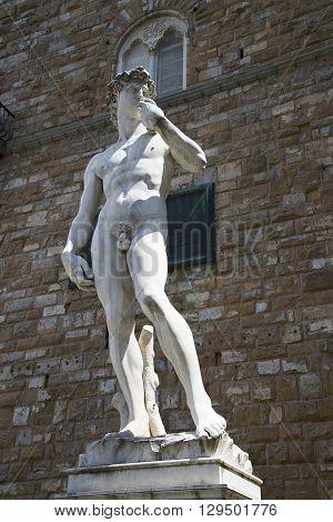 Michelangelo's David in Piazza della Signoria in Florence, Italy