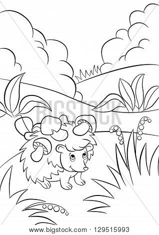 Coloring pages. Little cute kind hedgehog has the mushrooms on the needles. There are bushes plants grass and berries around. The hedgehog smiles.